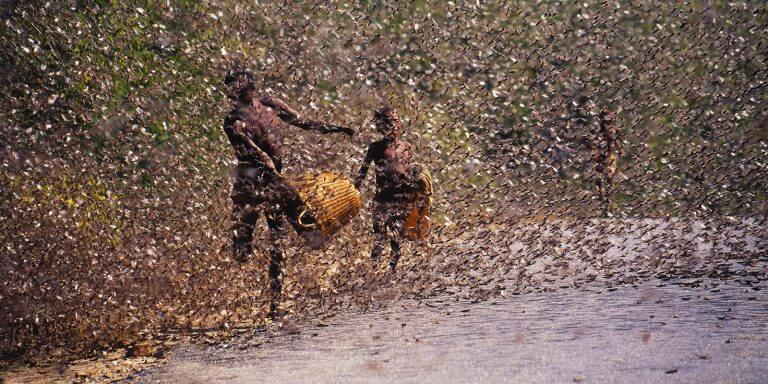 Kenya locust invasion--two boys in a swarm