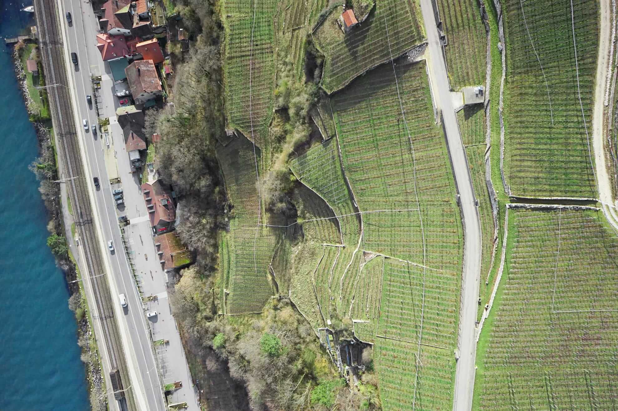 Aerial Mapping Lake biel Vineyards
