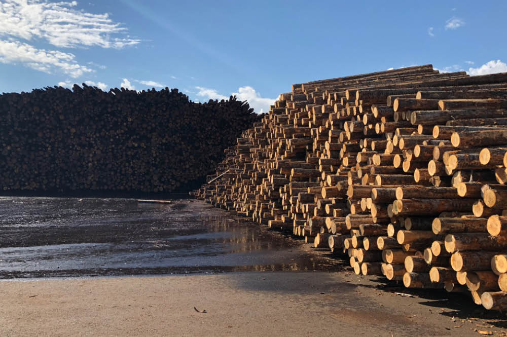 Wood stockpile